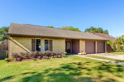 Houston Single Family Home For Sale: 12110 Kitty Brook Drive