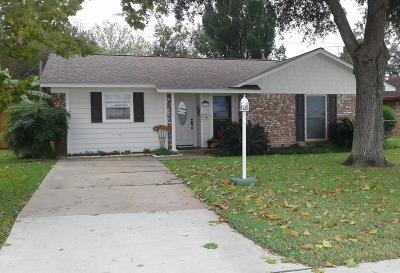 Fort Bend County Single Family Home For Sale: 1313 Bamore Road