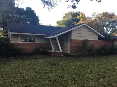 Meyerland Single Family Home For Sale: 5127 Carew Street