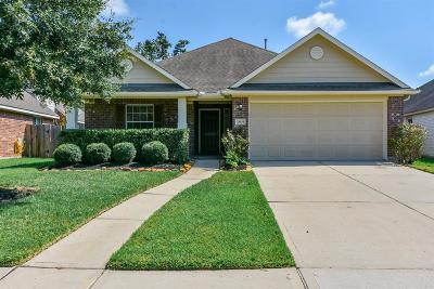 Spring Single Family Home For Sale: 28034 Emma Gardens Lane