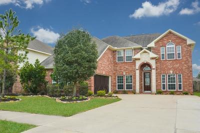 Rosenberg Single Family Home For Sale: 1007 Butterfly Lane