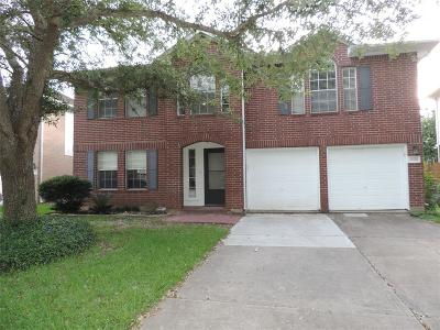 Fort Bend County Single Family Home For Sale: 16826 Summerfield Ridge Court