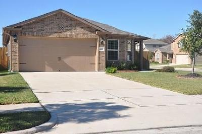 Houston Single Family Home For Sale: 6615 Lost Pines Bend