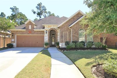 Humble Single Family Home For Sale: 17218 Blanton Forest Drive