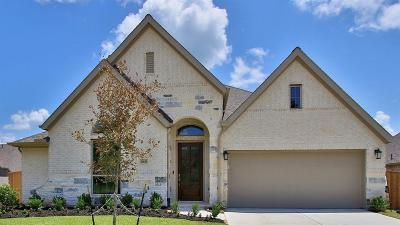 New Caney Single Family Home For Sale: 23630 Sage Villa Drive