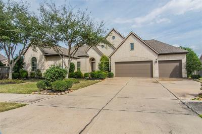 Katy Single Family Home For Sale: 27922 Bracken Hurst Drive
