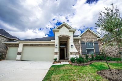 Conroe Single Family Home For Sale: 407 Stonebrook Lane