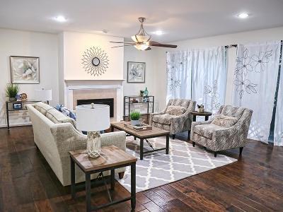 Houston Single Family Home For Sale: 12002 Naughton Street