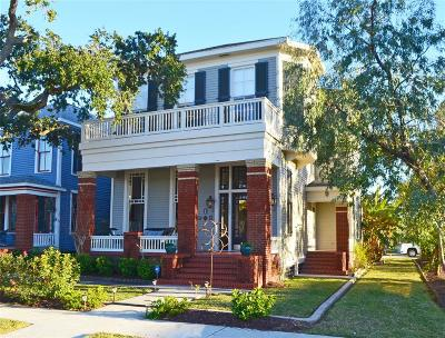 Single Family Home For Sale: 1227 Winnie Street