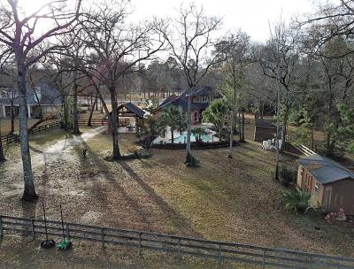 Huffman Single Family Home For Sale: 30206 Commons Royal View Drive