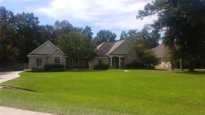 Montgomery Single Family Home For Sale: 717 Mountain View Drive