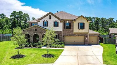 Houston Single Family Home For Sale: 15403 Jewel Lake Lane