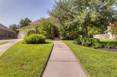 The Woodlands Single Family Home For Sale: 86 W Tapestry Park Circle