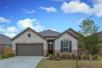 League City Single Family Home For Sale: 2832 Mezzomonte Lane