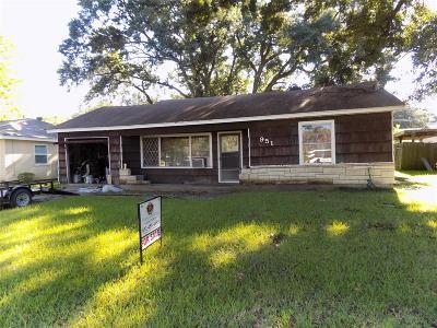 Houston Single Family Home For Sale: 951 Oak Meadows Street