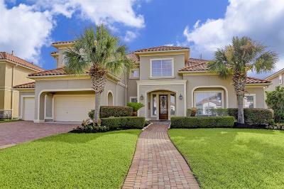 Houston Single Family Home For Sale: 2046 Diamond Springs Drive