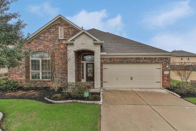 Rosenberg Single Family Home For Sale: 2810 Finwood