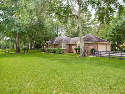 Hockley Single Family Home For Sale: 20231 New Kentucky Village
