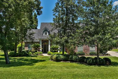 Tomball Single Family Home For Sale: 23714 Powder Mill Drive