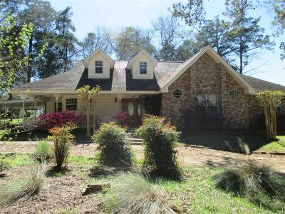 Alleyton Single Family Home For Sale: 1107 Mentzwood Trail