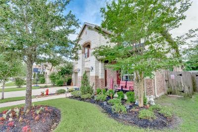 Spring Single Family Home For Sale: 18631 Crystal Cascade Lane