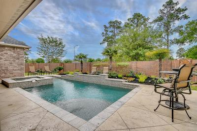 Spring Single Family Home For Sale: 9815 Blue Cruls Way