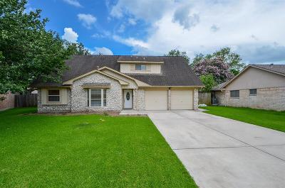 Houston Single Family Home For Sale: 10814 Kirkmead Drive Drive