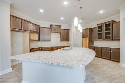 Missouri City Single Family Home For Sale: 10623 Lantana Pass