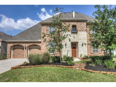The Woodlands Single Family Home For Sale: 6 Beacons Light Place