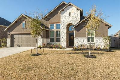 Fort Bend County Single Family Home For Sale: 21222 Baileywood Drive