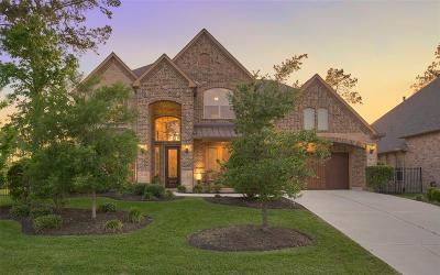 Spring Single Family Home For Sale: 38 Valera Ridge Drive