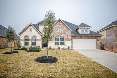 Katy Single Family Home For Sale: 29430 Pewter Run Lane