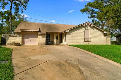 Houston Single Family Home For Sale: 9630 Jaywood Drive