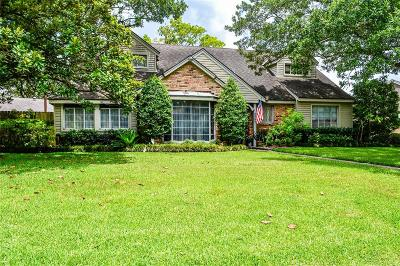 Houston Single Family Home For Sale: 806 Frostwood Drive