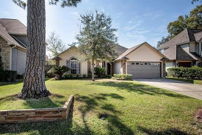 Houston Single Family Home For Sale: 1319 Chippendale Road