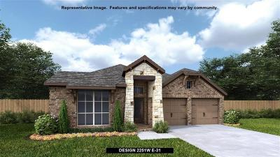 Tomball Single Family Home For Sale: 9422 Mont Ellie Lane