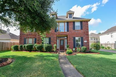 Sugar Land Single Family Home For Sale: 14503 Fenian Court
