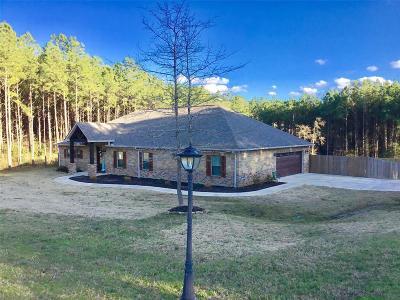 Polk County Single Family Home For Sale: 389 Eastgate Park