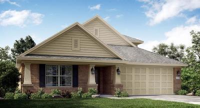 Conroe Single Family Home For Sale: 2910 Fox Ledge Court