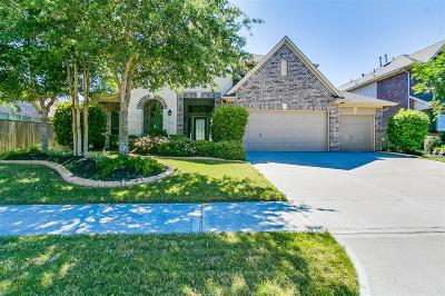 Katy Single Family Home For Sale: 10114 Sandhill Pine Court