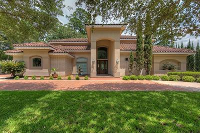Montgomery Single Family Home For Sale: 3210 Lazy Lake Lane