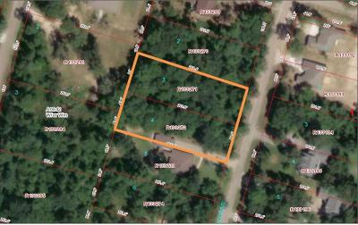 Willis Residential Lots & Land For Sale: Lots 3 & 4 Paradise View
