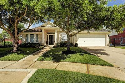 Pearland Single Family Home For Sale: 3042 Newbrook Drive