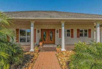 Brazoria Single Family Home For Sale: 1250 County Road 677
