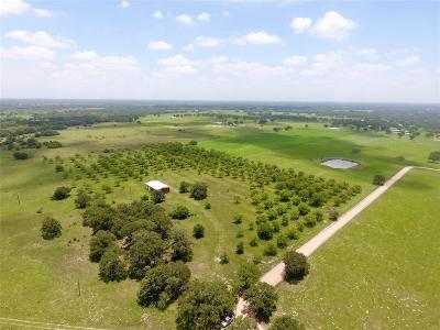 Farm & Ranch For Sale: County Road 1g