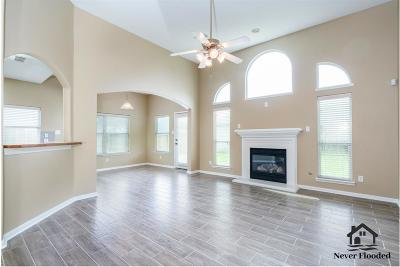 Katy Single Family Home For Sale: 19506 Bear Springs Drive