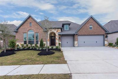 Harris County Single Family Home For Sale: 19411 White Rock Landing