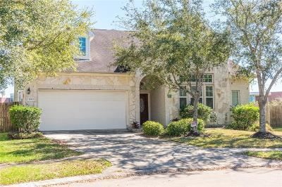 Pearland Single Family Home For Sale: 11902 Auburn Trail Lane
