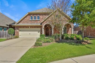 Sugar Land Single Family Home For Sale: 6507 Darmascus Court