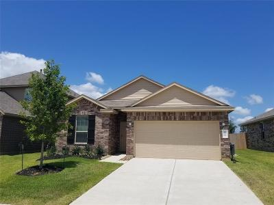 Single Family Home For Sale: 7035 Bonaire Vista